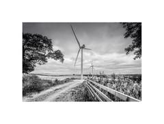 Wind Catchers (silver/halide) Tags: wideangle wind windfarm windgenerators windturbines farm farmlane farmland landscape johnbaker cornwall mono monochrome blackandwhite bw clouds weather greenenergy