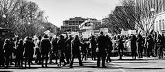 2017.02.04 No Muslim Ban 2, Washington, DC USA 00481