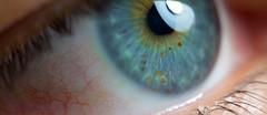 Tato's Eye (Fippo Gomes) Tags: 2017 canon eosm eye olho macromondays 7daysofshooting week28 portraits macromonday smileonsaturday eyecatcher