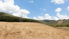 undulations (eanwe) Tags: brindabella cloud grass landscape sky tree trees wire