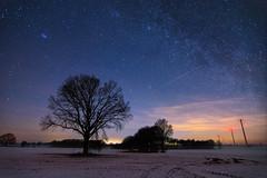 noise is gone (Martin.Merz) Tags: milchstrase milky way milkyway nightscape germany deutschland tree landscape baum niedersachsen
