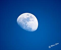 Águas Frias (Chaves) - ... lua em pleno dia ... (Mário Silva) Tags: águasfrias aldeia chaves trásosmontes portugal ilustrarportugal madeinportugal lumbudus máriosilva março primavera 2017 lua