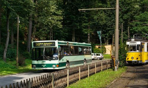 Pirna regional bus: MAN EL202 # PIR-K 241