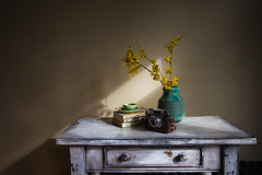 Sunset Song (cathbooton) Tags: books read coffee cup saucer spoon vase flowers camera table vintage march sunlight shadows morning canon sunset song h hawk welsh girl canoneos canonusers canonphotography canon6d halina achromat photography leather case forsythia yellow pottery angular film indoor