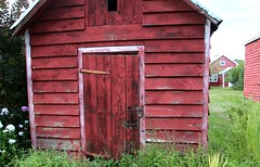 little red shed (Krasivaya Liza) Tags: birthday trip flowers summer vacation ny newyork floral countryside country barns upstate farms hudson claverack holmquest
