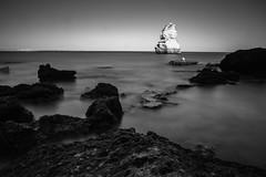 seagull (Nelson_Faria) Tags: longexposure sea blackandwhite seascape beach project landscape mar paisagem lagos photoaday 365 bnw praiadocamilo gaivota monocromtico 149365