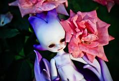 IMG_2144 (letalan) Tags: out doll bjd dollzone