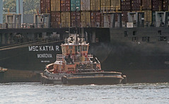 Boston Tug - Freedom (Hawkeye2011) Tags: usa boston boats freedom marine massachusetts ships transport maritime tug saltwater 2015