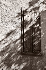 Settembre (silviasalvi) Tags: shadow italy tree window monochrome leaves sepia foglie alberi ombra finestra bergamo