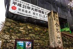 (Digital_trance) Tags: fish castle japan landscape cuisine tokyo ginza gourmet kobe nagoya seafood  himeji sakura   akihabara japanesefood asakusa  nara  daimon  kodama kusatsu hikari  haneda   himejicastle yoshino      hamamatsucho    suica     hanedaairport      worldculturalheritage sashima  heianjingushrine    simbashi stationshinkansen   mtyoshino    takedacastleruins hiranojinjashrinearashiyamakyoto