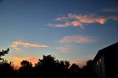 DSC_2305 (bfaling) Tags: trees columbus ohio red summer orange sun yard sunrise back glow neighborhood oh 2015