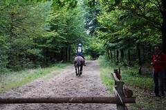Doorn (Steenvoorde Leen - 2.1 ml views) Tags: horses horse jumping cross doorn pferde pferd reiten manege paard paarden springen 2015 utrechtseheuvelrug hindernis sgw arreche manegedentoom