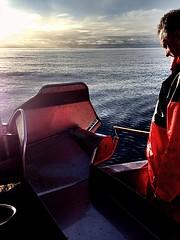 Autoline fishing... (Tabergid) Tags: sunset sea iceland breiafjrur iphonography autoline