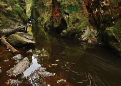 Fairy Glen (Mark A Jones (Andreas Jones Photography)) Tags: autumn water wales nikon gorge fairyglen fairyglengorge andreasjones d800e andreasjonesphotographytours