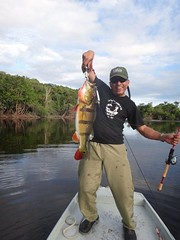 Amazonia 2012 (4)