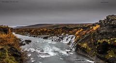 Hraunfossar (Nobby1968) Tags: river landscape waterfall iceland hraunfossar autumngold hraunfossglacialwaterlava