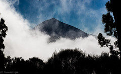 The mountain (Thomas Frejek) Tags: spain canarias tenerife es teneriffa spanien arafo 2015 picodelteide parquenacionaldelteide teidenationalpark