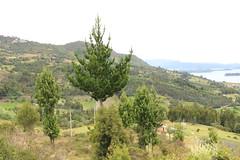 "Paisaje del mirador de la Laguna de Tota • <a style=""font-size:0.8em;"" href=""http://www.flickr.com/photos/78328875@N05/23425466759/"" target=""_blank"">View on Flickr</a>"