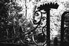 150822_SAM_0853 (Jan Jacob Trip) Tags: engeland uk black white fence contrast bw unitedkingdom abstract oxford england nostalgia nostalgic