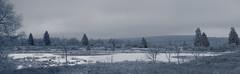 Hohes Venn / Eifel