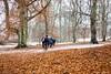 DSC_5053-Edit.jpg (marius.vochin) Tags: leaves winter forest hiking outdoor men cold snow patchesofcolor vaxholm stockholmslän sweden se