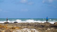 406 - Admiration des vagues à Curio Bay