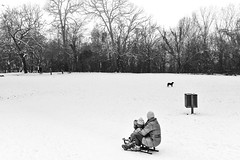 winter magic (Zlatko Vickovic) Tags: streetstreetphoto streetphotography streetphotographybw streetbw streetphotobw blackandwhite monochrome zlatkovickovic zlatkovickovicphotography novisad serbia vojvodina srbija