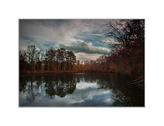 On a lake (The LightCatcher) Tags: color landscape cold winter skies lake water reflections trees canon5d