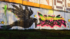 NaÖH • Stime (HBA_JIJO) Tags: streetart urban graffiti vitry vitrysurseine animal art france hbajijo wall mur painting letters oiseau peinture lettrage graff lettres lettring bird murale paris94 spray mural stime naoh crow