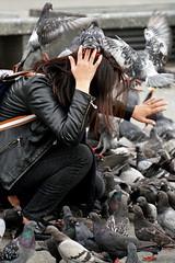 Poland-01748 - Pigeon Attack (archer10 (Dennis) 90M Views) Tags: krakow poland globus sony a6300 ilce6300 18200mm 1650mm mirrorless free freepicture archer10 dennis jarvis dennisgjarvis dennisjarvis iamcanadian novascotia canada marketsquare oldtown lady pigeons attack