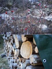 Do Re Mi (Insher) Tags: austria österreich wood nature längenfeld dyptich tyrol tirol ötztal