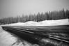 Schnee im Harz 2017 (D.ST.) Tags: aufgenommen mit der pentax ist dl2 schnee im harz 2017 germany black white schwarz weis weiss german street snow winter photoshop cs6