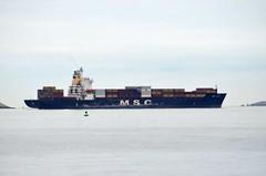 MSC Japan (jelpics) Tags: cargoship commercialship conleyterminal cranes merchantship msc mscjapan anchor anchorage boat boston bostonharbor bostonma harbor massachusetts ocean port sea ship vessel