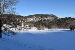 PHO_0165 (Dimi_M) Tags: neige soleil nature foret