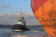 Peekaboo. (MSGS4) Tags: cork ireland whitegate water river nautical tug pilot tanker nscreation