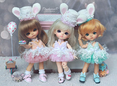 Lati Yellow Sunny, G.Yuri, S.Belle (Bunny Collection) (PruchanunR.) Tags: lati yellow limited bunny sunny gyuri sbelle doll bjd balljointdoll