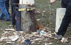 Sheffield Lumberjacks (rentavet) Tags: analog sheffieldjohnnyappleseedfestival sheffieldpa minoltamaxxum5000 rokinar70200mm hawkeyesurveillancefilm2486