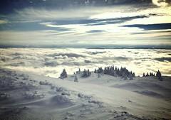 Petit crêt et sa mer de nuages (GastonGraphy) Tags: perspective jura montagnes nuages genevois neige snow landscape outdoor sapins givre chézeryforens