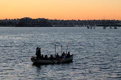 13. Pirate boat (Misty Garrick) Tags: sandiegoca sandiego sunset sandiegosunset pirate boat pirateboat
