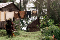 28-210 (ndpa / s. lundeen, archivist) Tags: house color building film fiji rural 35mm countryside village nick clothes laundry southpacific 28 clothesline thatchedroof 1970s 1972 dewolf oceania fijian pacificislands villagelife rurallife thatchroof nickdewolf photographbynickdewolf reel28