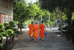 Three Monks retreat to their Monastery (Bn) Tags: life old school portrait people man face thailand religious pain amazing search movement topf50 god nirvana path expression bangkok buddha buddhist religion crying deep monk buddhism thoughts chi thai end donation population sensuality wat enlightenment 95 suffering powerful wrinkles liberation choose chee ending siddhartha serve extremes craving suk teachings honorable seclusion lifelong relinquish kasem thailands theravada thung 50faves officiants khru sukkasem