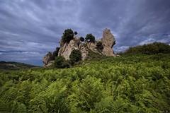 Rocche dell'Argimusco (In2ShT) Tags: ferns dramaticsky f11 hdr highdynamicrange sicilia felci montalbanoelicona canoneos550d sigmaexdchsm1020mmf456 altopianodellargimusco