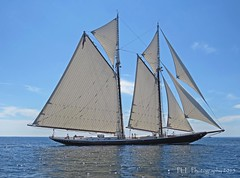 7 - The Schooner Columbia (ParkerRiverKid) Tags: sailboat columbia gloucester nautical schooner bold scavenger7 ansh64
