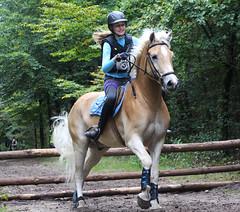 Doorn (Steenvoorde Leen - 2.3 ml views) Tags: horses horse jumping cross doorn pferde pferd reiten manege paard paarden springen 2015 utrechtseheuvelrug hindernis sgw arreche paardencross manegedentoom