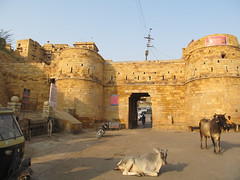 "Fort de Jaisalmer <a style=""margin-left:10px; font-size:0.8em;"" href=""http://www.flickr.com/photos/127723101@N04/22399069291/"" target=""_blank"">@flickr</a>"