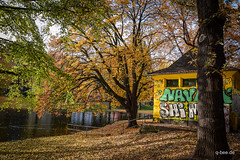 DSC_0179.jpg (Q-BEE) Tags: park autumn trees colours laub herbst cologne köln leafs spaziergang
