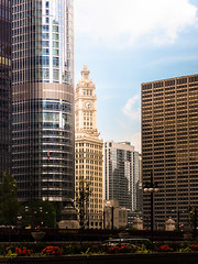 L1050215.jpg (nianci pan) Tags: lighting blue light shadow sky urban lake chicago flower color tree water leaves car clouds river landscape leaf illinois cityscape pan trumptower wrigley chicagoriver 建筑 芝加哥 nianci 密西根州 芝加哥河 伊利诺州