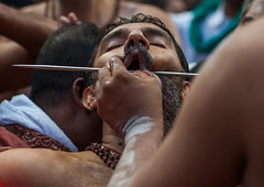 A Devotee Cheek Is Pierced With A Skewer By A Priest At Thaipusam Hindu Festival At Batu Caves, Southeast Asia, Kuala Lumpur, Malaysia (Eric Lafforgue) Tags: pierced people man men tourism public festival horizontal mouth festive religious outdoors photography pain asia southeastasia day cheek indian faith religion ceremony piercing parade celebration event malaysia devotion pierce ritual priest kualalumpur spirituality tradition devotee hindu hinduism malaysian cultures pilgrimage batu skewer thaipusam hindi pilgrim oneperson selangor decorated placeofworship penance traveldestinations onemanonly 1people humanmouth indianethnicity humanbodypart kl192