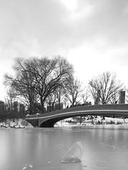 Discrete Entropy (Alessandro Frati) Tags: nyc ny central park umbrella bn winter ice snow storm bridge bow bowbridge wood chip lake