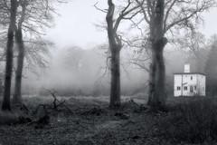 Misty Woodland (Graham'M) Tags: blackandwhite misty landscape mono trees cottage fog